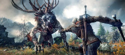 the-witcher-3-wild-hunt-uk-info-multilingua-ps4-xbox-one-pc